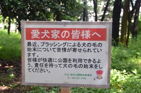 20140626園生の森公園04