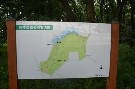 20140626園生の森公園01