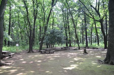 20140626園生の森公園02