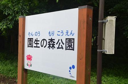 20140626園生の森公園11