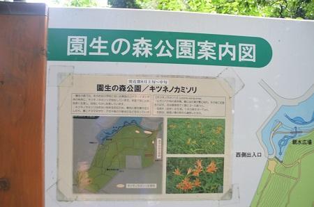 20140626園生の森公園10