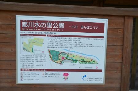 20140626都川水の里公演02