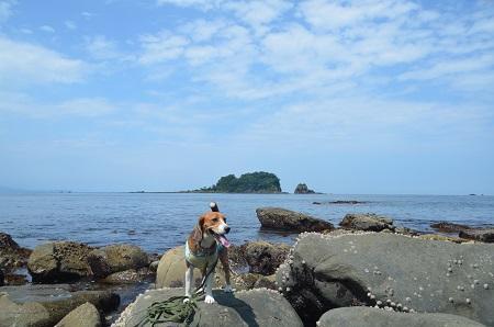 20140701汐吹海岸10