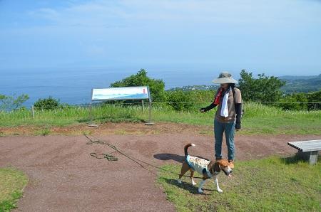 20140701小室山公園13
