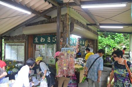 20140702浄蓮の滝16