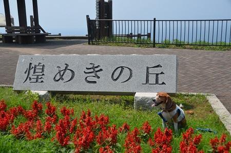 20140702戸田ビューポイント07