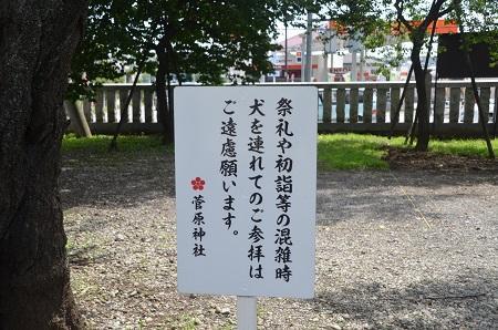 20140712井出沢城址01