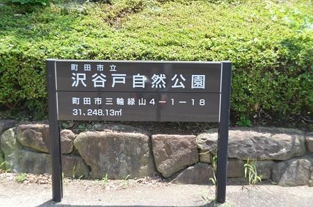 20140712沢谷戸自然公園05