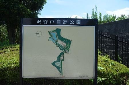 20140712沢谷戸自然公園04