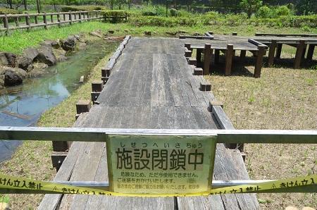 20140712沢谷戸自然公園12