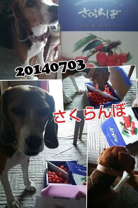 20140703八王子01