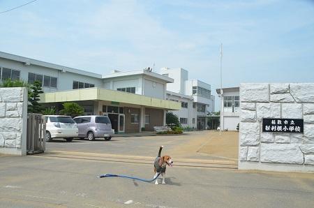 20140724 柴崎小学校05