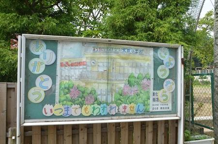 20140724 大田小学校06