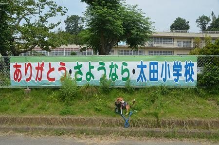 20140724 大田小学校01