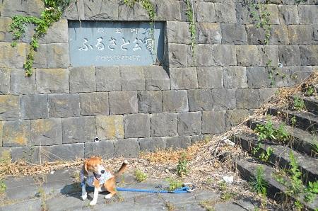 20140730 若神子城址23