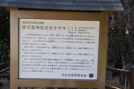 20140730 根古屋神社02
