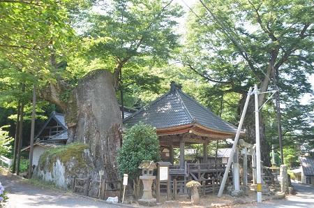 20140730 根古屋神社01