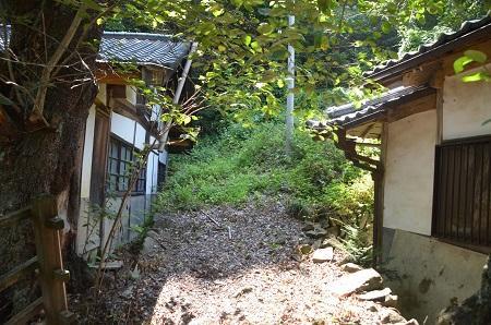 20140730 根古屋神社11