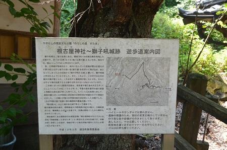 20140730 根古屋神社10