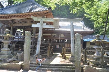 20140730 根古屋神社07