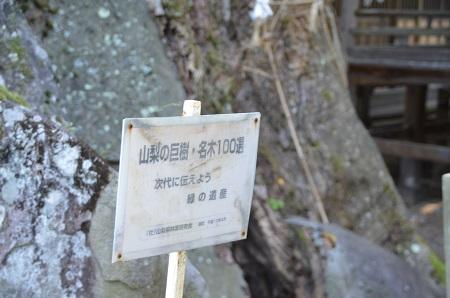 20140730 根古屋神社16