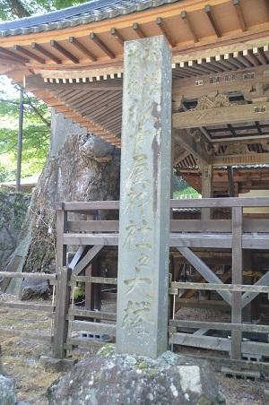 20140730 根古屋神社15