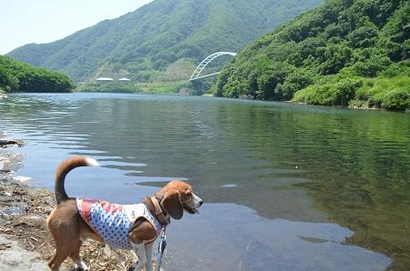 20140730 みずかき湖06