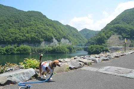 20140730 みずかき湖04