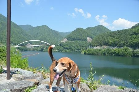 20140730 みずかき湖02
