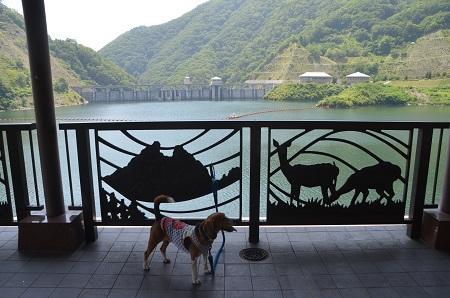 20140730 みずかき湖15