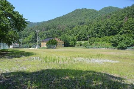 20140730 江草小学校26