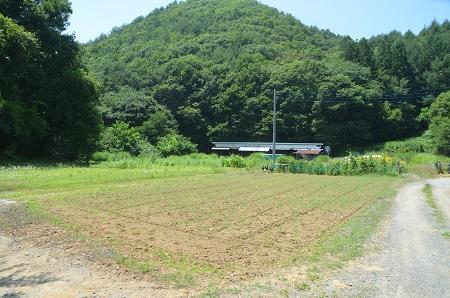 20140730 旧・増冨小学校跡05