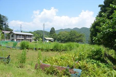 20140730 旧・増冨小学校跡02