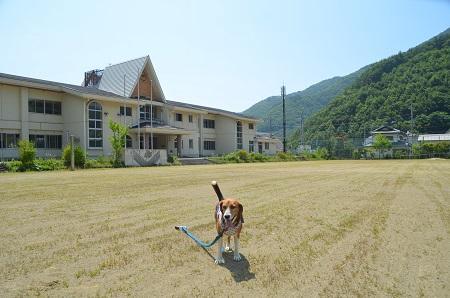 20140730 増冨小学校06