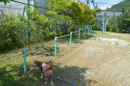 20140730 増冨小学校13