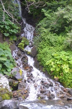 20140731 吐竜の滝09