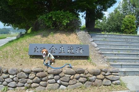 20140731 金生遺跡02