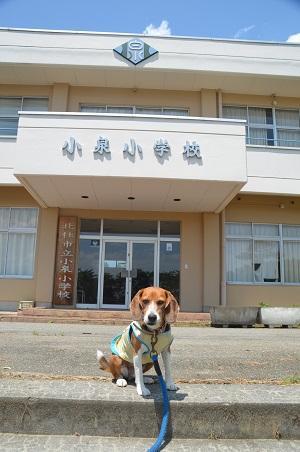 20140731 小泉小学校20