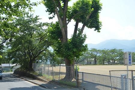 20140731 小淵沢西小学校06