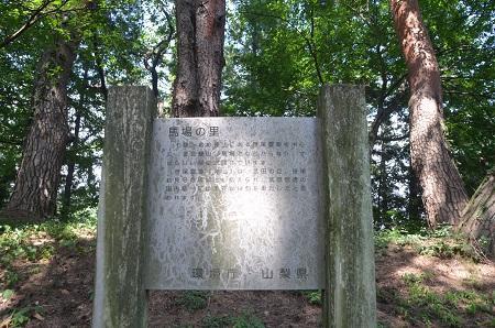 20140731 笹尾砦06