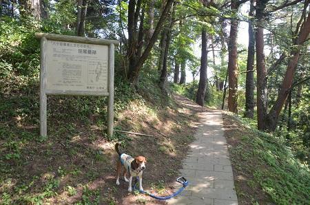 20140731 笹尾砦02