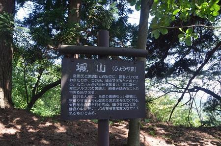 20140731 笹尾砦07