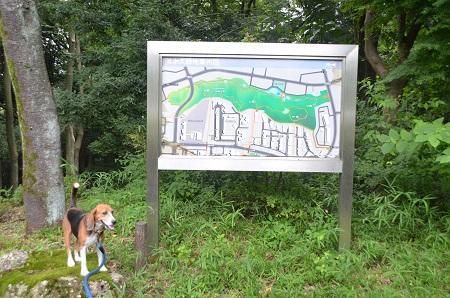 20140817清水入緑地02