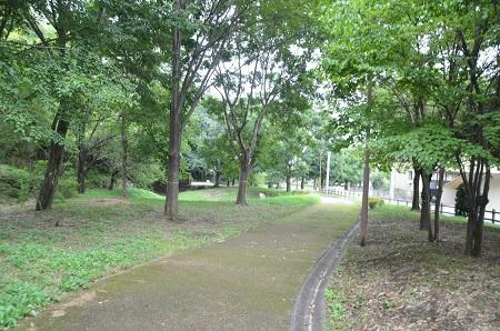 20140817清水入緑地18