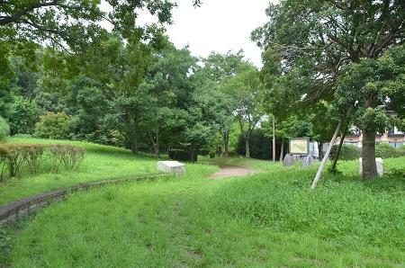 20140817清水入緑地17