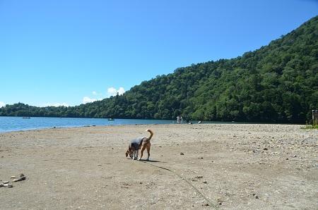 20140822 湯の湖06