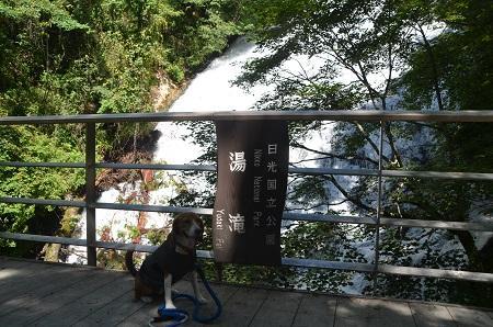 20140822湯滝06
