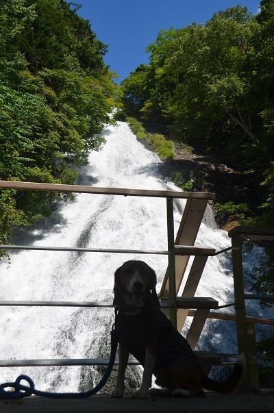 20140822湯滝12