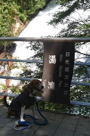20140822湯滝07