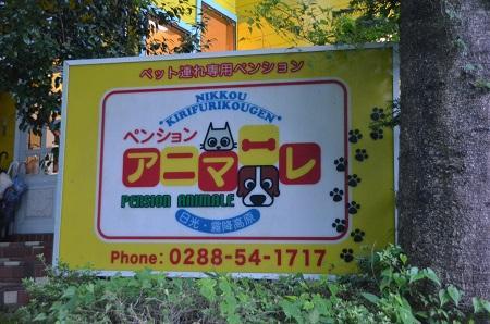 20140822 アマーレ日光07